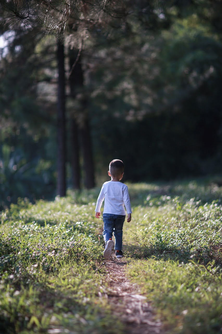 boy, kid, child-6112145.jpg